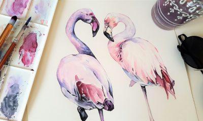 Jak zapewnić książkom piękne ilustracje?
